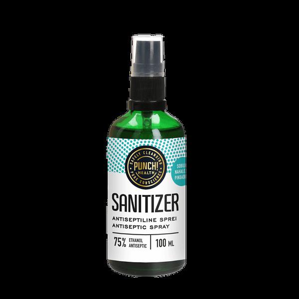 Punch Sanitizer 100ml pihustiga klaaspudelis